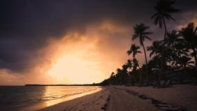 Tropical paradise island beach with palms , sunset scenery, evening stock footage