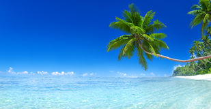 Tropical Paradise Island Beach Sea Concept Stock Image