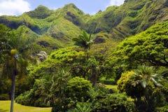 Tropical paradise. Kuaola Ranch Landscape Stock Photos