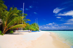 Tropical Paradise at Maldives Royalty Free Stock Photo