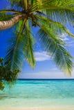 Tropical Paradise at Maldives Stock Photo