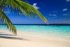 Tropical Paradise at Maldives Stock Photos