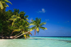 Tropical Paradise at Maldives Stock Photo