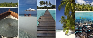 Tropical Paradise - The Maldives Royalty Free Stock Photo