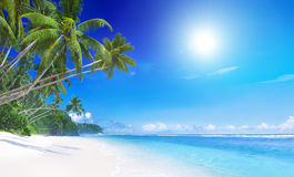 Tropical paradise nature outdoors concept Stock Photo