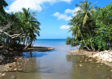 Tropical Paradise. A picture of a beautiful beach in Guam stock photo