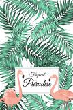 Tropical paradise poster card template greenery Stock Image