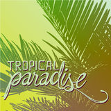 Tropical paradise quote illustration Royalty Free Stock Images