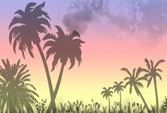 Tropical Paradise Scene. A tropical paradise scene with a beautiful sunset and silhouette palms and vegetation vector illustration