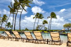 Tropical paradise scene with row of chairs along a sandy beach w Stock Image