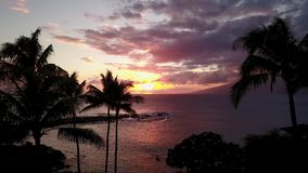 Tropical paradise on the shore of pacific ocean at sunset on island maui,hawaii stock video footage