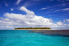 Tropical Paradise. Small tropical island in Queensland Australia. Lady Musgrave Island is a natural paradise Royalty Free Stock Photo