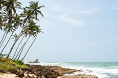 Tropical paradise in Sri Lanka Royalty Free Stock Photography