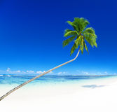 Tropical Paradise Summer Vacation Leisure Concept Royalty Free Stock Images