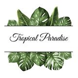 Tropical paradise top bottom frame. Exotic jungle rainforest greenery. Palm tree monstera philodendron leaves. Text placeholder. Vector design element for card royalty free illustration