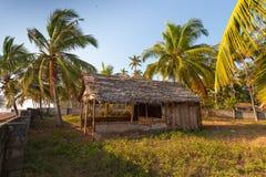 Tropical Paradise - Varkala Stock Photos