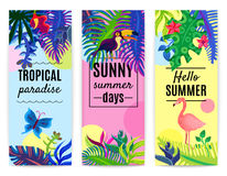 Tropical Paradise Vertical Banners Collection. Tropical paradise summer vacation 3 vertical colorful background banners set with plants flowers toucan flamingo Stock Photos