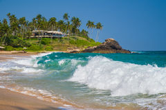 Tropical paradise. Waves on the beach with coconut palms Royalty Free Stock Image