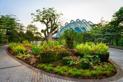Tropical park and modern glass dome building Stock Images