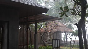Tropical park in rainy weather. Bungalow in a tropical park in rainy weather stock video footage
