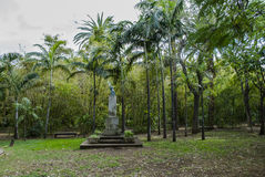 Tropical park (Santa Cruz de Tenerife) Royalty Free Stock Photography
