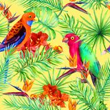 Tropical parrot bird, jungle leaves, exotic flowers. Seamless pattern. Water color Stock Photography