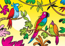 Tropical parrots. The illustration shows some beautiful tropical parrots. Illustration done in cartoon style Stock Photography