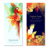 Tropical Parrots Vertical Banners. Realistic tropical parrots vertical banners set with compositions of colorful birds and leaves with editable text vector Royalty Free Stock Photos