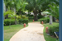Tropical Passage. A path in a tropical garden Stock Photography