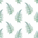 Tropical pattern Royalty Free Stock Photography