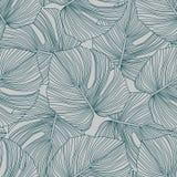 Tropical Pattern, Botanical Leaf Seamless Pattern. Monstera Leaves Backdrop Royalty Free Stock Photos