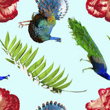 Tropical pattern with exotic nature decoration Royalty Free Stock Photo
