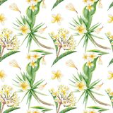Tropical Pattern Stock Photo