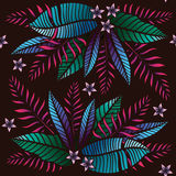Tropical pattern with exotic plants. Seamless  tropical pattern with leaves. Stock Photography