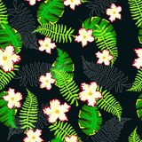 Tropical pattern with ferns. Seamless pattern with leaves of ferns and tropical flowers and leaves, colorful floral background Stock Image