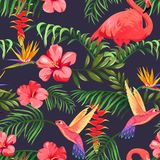Tropical pattern with flamingos, hummingbirds and palm leaves stock illustration