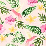 Tropical pattern with flowers and hummingbirds vector illustration