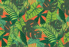 Tropical pattern Royalty Free Stock Image