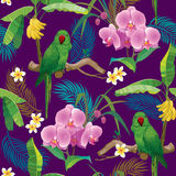 Tropical pattern with green parrot Stock Photos