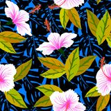 Tropical pattern with hibiscus flowers. Vector seamless pattern with tropical decor: flowers, leaves, hibiscus plant on background of palm leaves and exotic Royalty Free Stock Photo