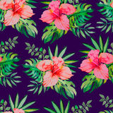 Tropical pattern. Hibiscus, monstera leaf, palm Stock Photography