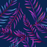 Tropical pattern. Stock Images