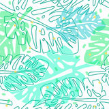 Tropical pattern with monstera palm leaves Royalty Free Stock Photo