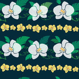 Tropical pattern with orchids. Tropical pattern with white and yellow orchids, seamless vector patter Royalty Free Stock Photography