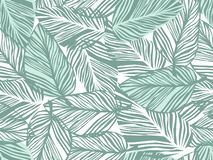 Tropical Pattern, Palm Leaves Seamless Vector Floral Background. Stock Photography