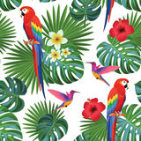 Tropical pattern with parrots and hummingbirds. Vector seamless texture. Royalty Free Stock Image