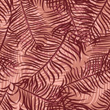 Tropical pattern 41 Royalty Free Stock Photography