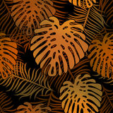 Tropical pattern 54. Seamless vector tropical pattern depicting golden palm tree on a black background Royalty Free Stock Photography