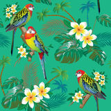 Tropical pattern with small parrots Stock Images