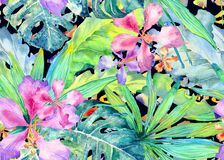 Tropical pattern. Watercolor thailand palm, monstera, hibiscus, banana tree. Exotic swimwear design. Horizontal summer hawaiian pattern. Aloha textile repeated royalty free illustration